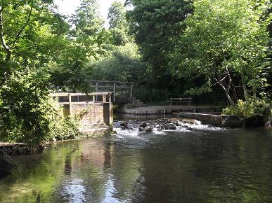 Water Meadows Weir