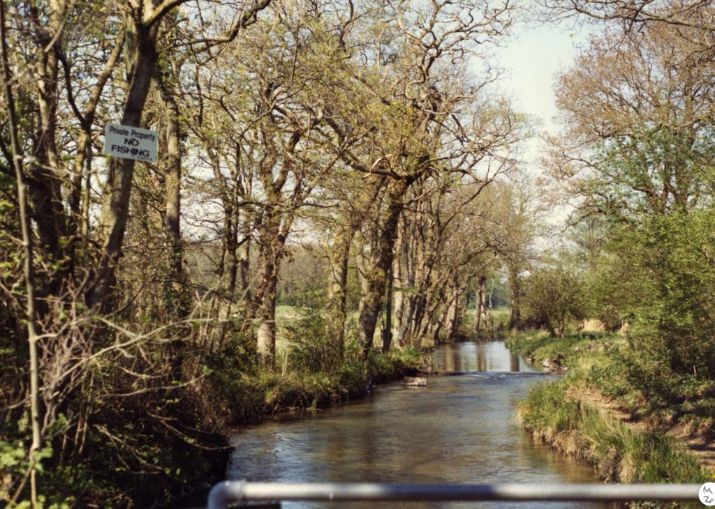 SW 3 Water Meadows 2001